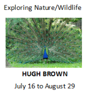 Exploring Nature-Wildlife, Hugh Brown, July 16 to August 29